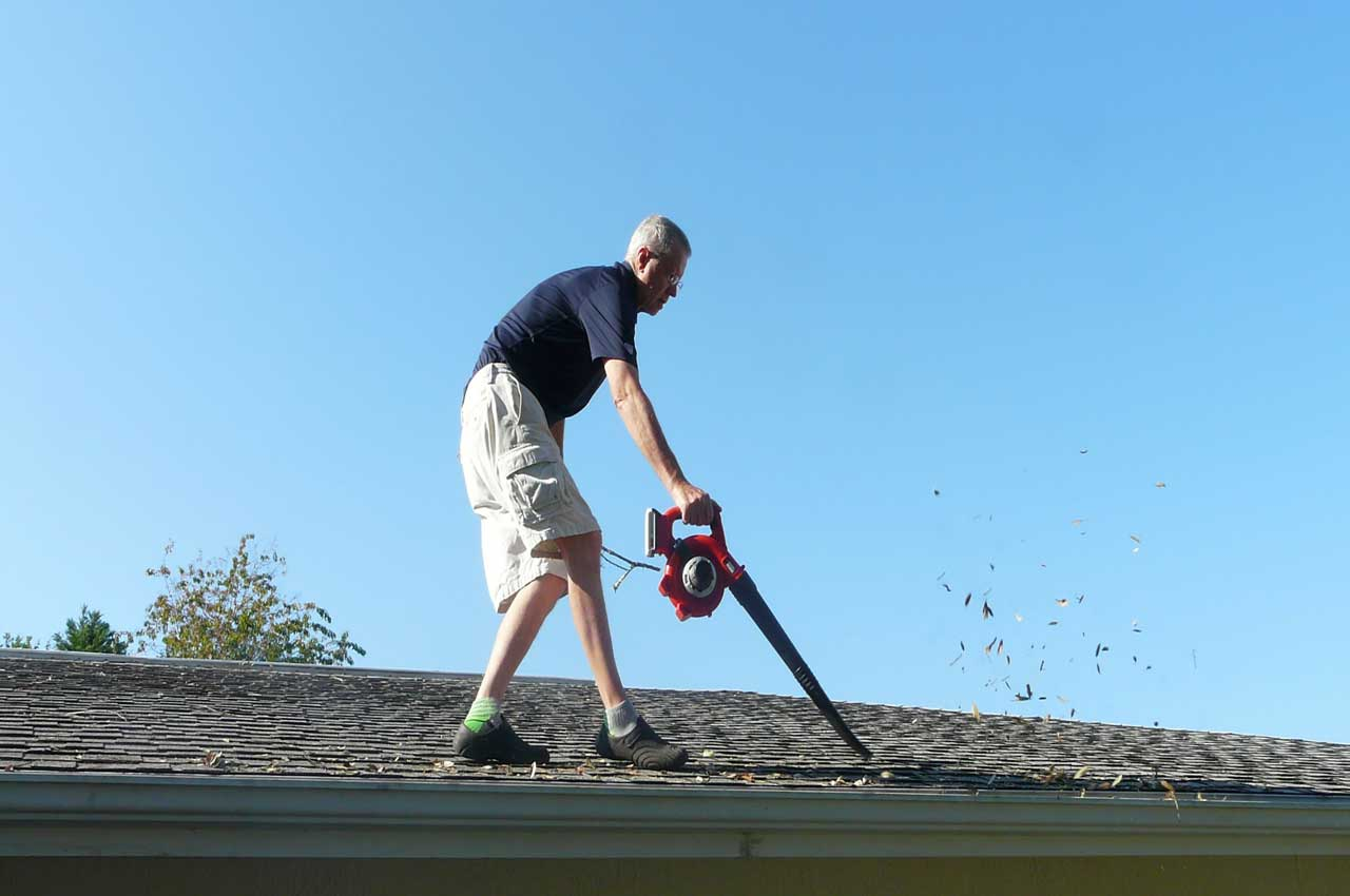 Roof cleaning with blower